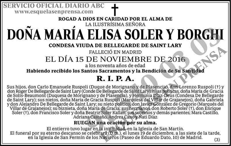 María Elisa Soler y Borghí